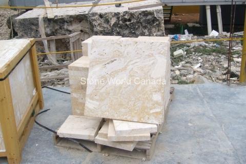 Building Stone - Caribbean Coral Stone