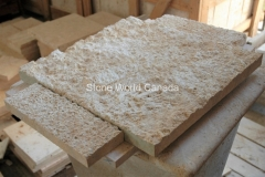 Building Stone - Caribbean Coral Stone
