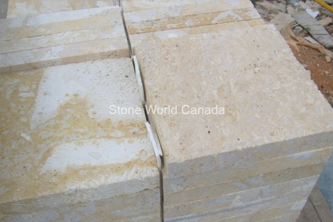 Coral-Stone-From-Dominican-Republic-Stone-Quarries