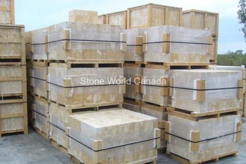 Dominican-Coral-Stone-stone